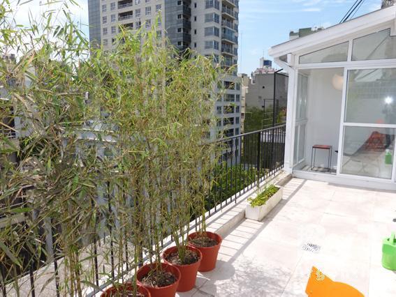 Balcony-terrace
